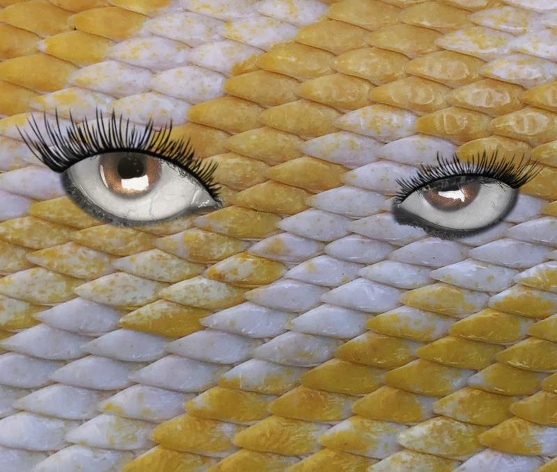 Alternative pop singer Chris Sunfield shares the evocative song, 'Predator'